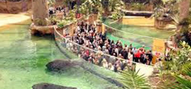 Zoo - Köln